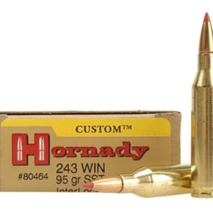 Hornady Ammo 243 Win 95 Grain SST (Super Shock Tip) (20)